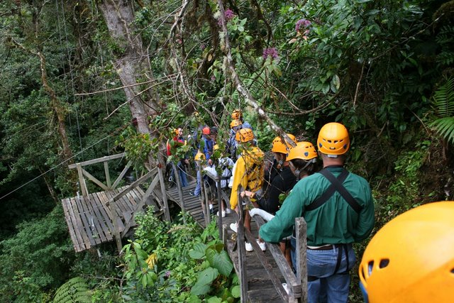 Rain forest at boquete tree trek canopy tours lasolasvilla com